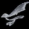 Aetovigla Logo